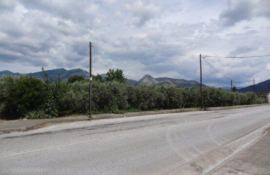 Οικόπεδο 1300 τ.μ. στην επαρχιακή οδό Ξάνθης Πετεινού.
